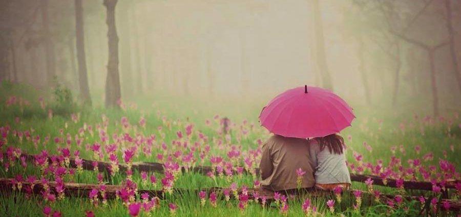 amor é permetir-patricia-gebrim